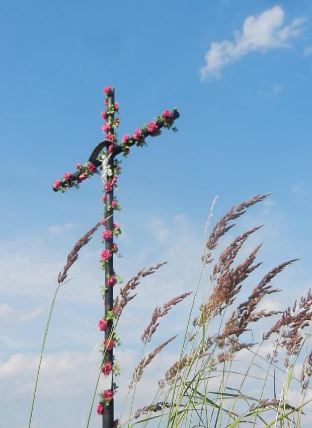 >>Chwalcie łąki umajone #krzyż #PrzydrożnyKrzyż