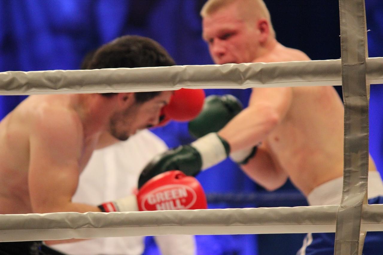 boks w telewizji, wyniki live