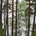 'moja' woda, 'mój' las, 'moje' wzgórza - to nic, że nie tylko moje ;) #las #jezioro #Kaszuby #Brzeźno