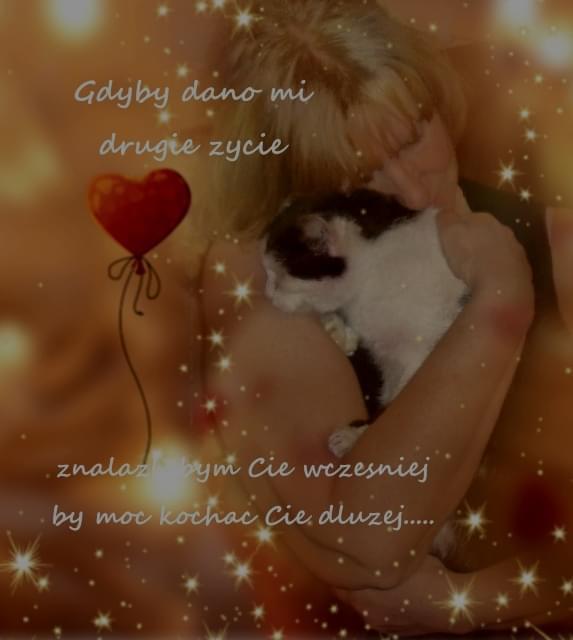 Miłość..... #koty #miłość #urodziny