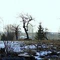 #krajobrazy #przyroda #drzewa #lasy #łąki #sad #staw #niebo #słońce #rośliny