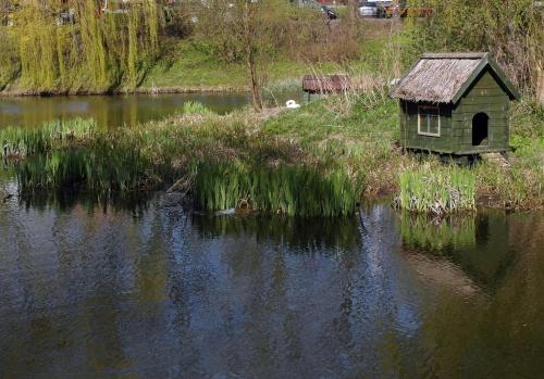 Wiosna w parku #Amfiteatr #elektronik #gołębie #poczta #WiosnaWParku